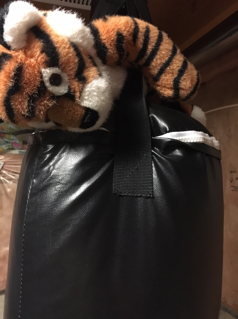 photo of tiger stuffie on top of punching bag