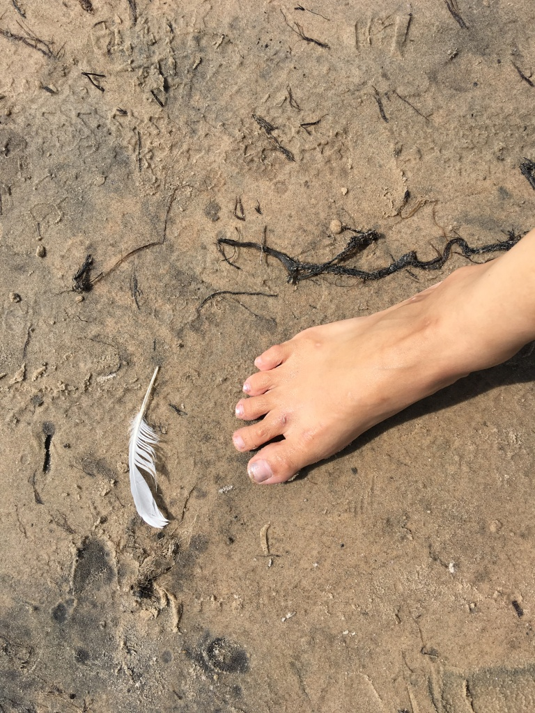 photo of monica's barefeet on different ground